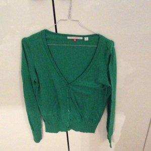 Grüner Kaschmir-Baumwolle Cardigan