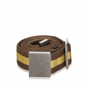 Gucci Belt brown nylon
