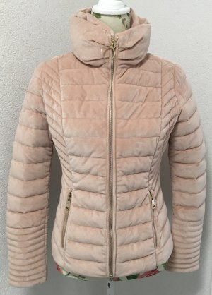 Guess Winter Jacke Gr.L