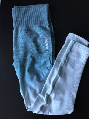 Gymshark Ombre Seamless Leggings