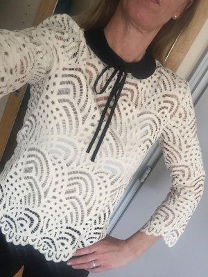 Hallhuber Spitzenbluse creme-schwarz Lochstrickmuster Casual-Look