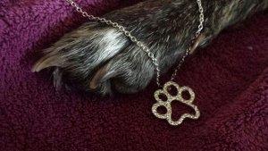 Halskette silber mit Strassbesetzter Hundepfote NEU