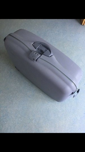 Samsonite Suitcase light grey