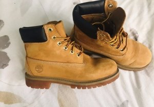 Timberland Desert Boots multicolored