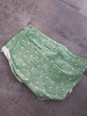 hellgrüne hotpans mit schleifen 36/38