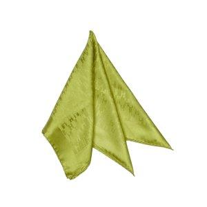 Hermès Sjaal lichtgroen Zijde