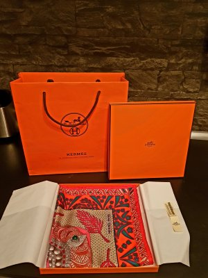 Hermes Seidentuch Original