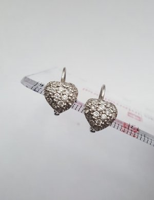 Silver Earrings silver-colored-light grey
