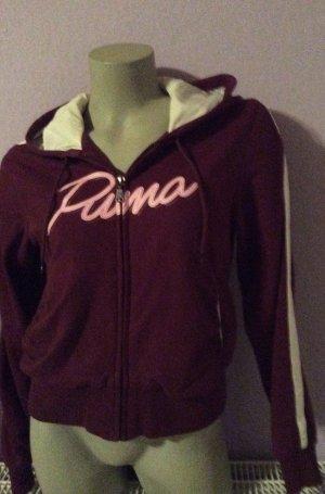 Hochwertige Sweatjacke mit Kapuze von Puma Gr. S pflaume