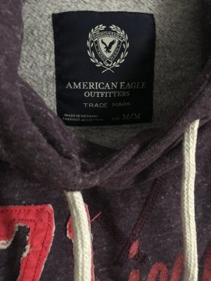 American Eagle Outfitters Capuchon sweater veelkleurig