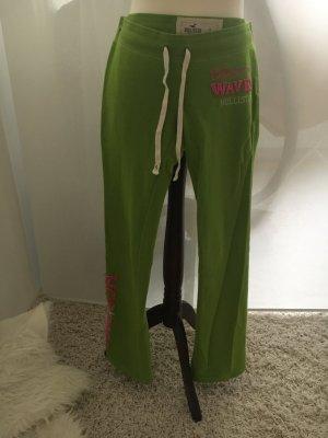 Hollister Pantalon de jogging vert