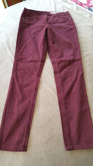 Blue Motion Jersey Pants bordeaux