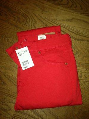 Hose in rot von H&M Gr.36