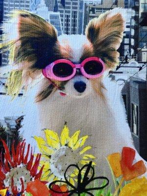 Hund mit pinker Brille Shirt, Marc Cain, N2