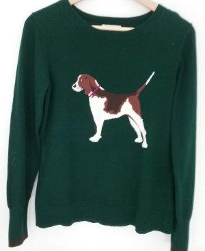 Jack Russel   Terrier  Pulli   englisch grün