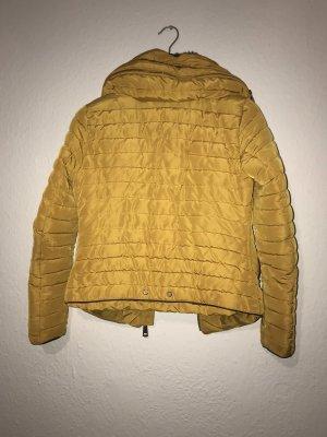 Zara Basic Jack goud Oranje