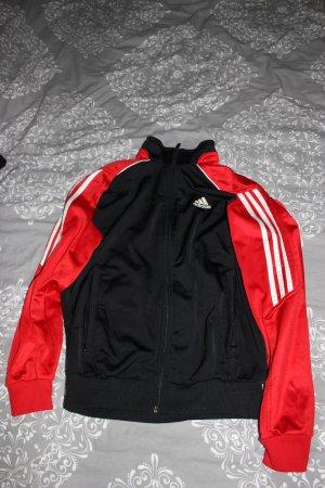 Jogginganzug Hose + Jacke Adidas