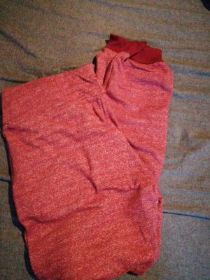 Blutsgeschwister Sweat Pants bright red