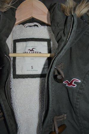 Khaki Winterjacke von Hollister