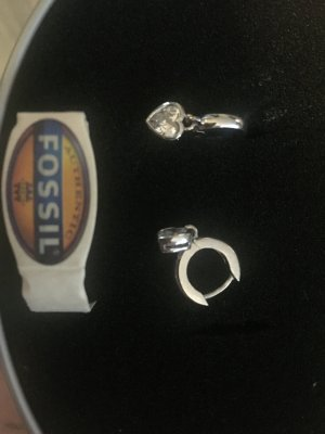 Fossil Earclip silver-colored