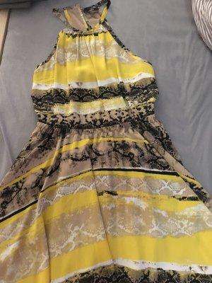 Kleid der Marke bebe