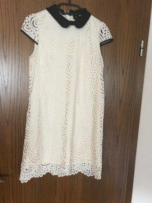 Kleid mit Bubikragen der Marke Zara
