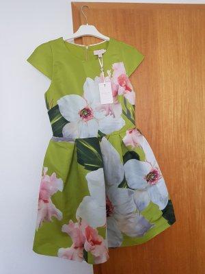 kleid ted