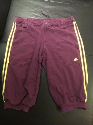 Knielange Sporthose von Adidas
