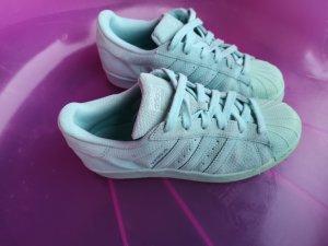 kultige Adidas Superstar mit Statement Farbe