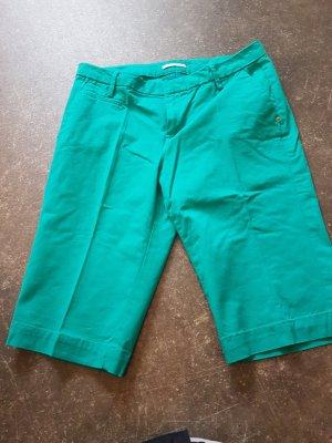 Pantalone da abito turchese