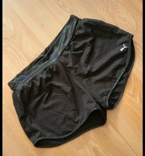 Puma Sport Shorts multicolored