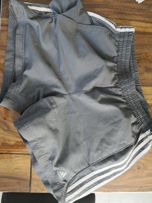 Adidas Sport Shorts white-grey