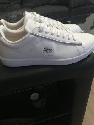Lacoste sneaker neu !!!