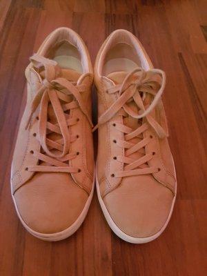 Lacoste sneaker NEU 38