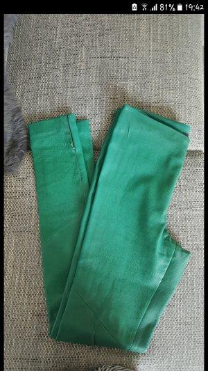 Patago Pantalone in pelle verde