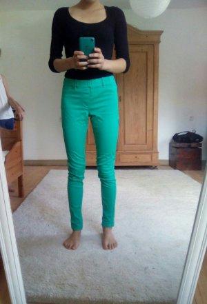 Leggings/Hose in frischem Grünton