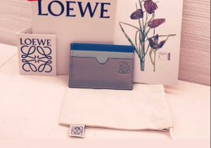 Loewe Card Case multicolored