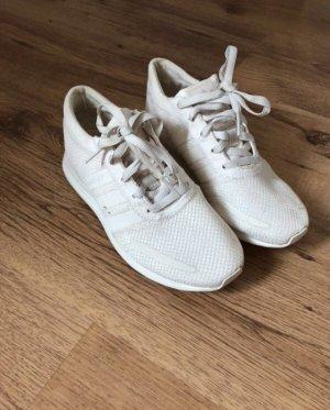 Adidas Basket à lacet crème