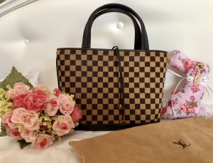 Louis VUITTON Damier Sauvage Limited Edition