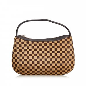 Louis Vuitton Damier Sauvage Tigre