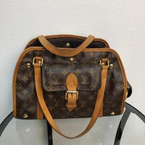 Louis Vuitton Exklusive Hundetragetasche