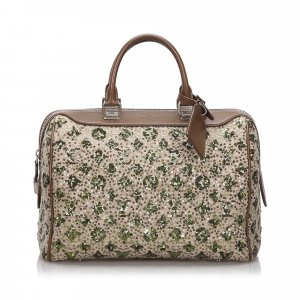 Louis Vuitton Limited Edition Monogram Sunshine Express Speedy