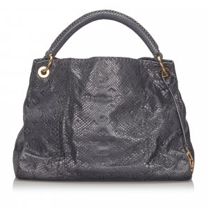Louis Vuitton Monogram Python Artsy MM
