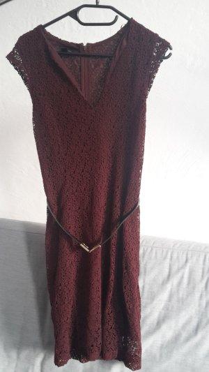 Mango Suit Kleid Spitzenkleid S 36