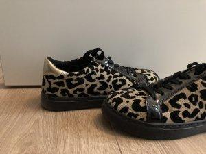Miss Sixty Sneaker Gr.38