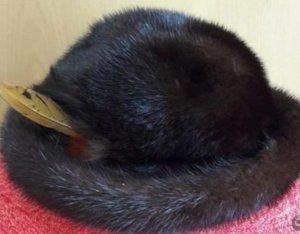 Cappello in pelliccia marrone scuro-nero Pelliccia