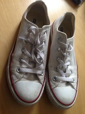 Must-Have!! Converse Chucks in weiß (Größe 36,5)