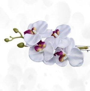 neu ~ HAARSPANGE 4er ORCHIDEE WEISS ~ Haarclip Hawaii Blumen Fascinator ❁❁ jetzt alle Teile mega reduziert :-)