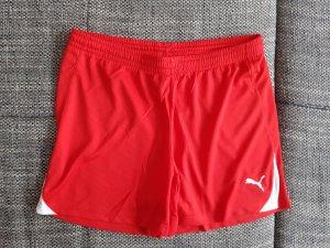 Puma Sport Shorts white-red