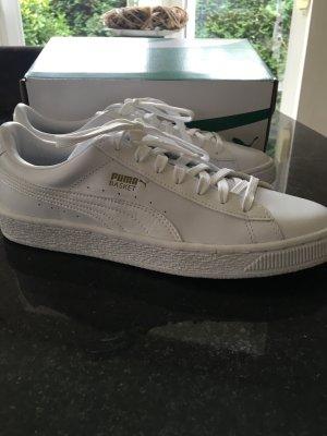 NEUE weiße Sneaker PUMA Basket Classic Animal Croc in 40